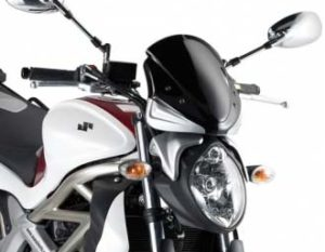 Givi GS A172S Screen